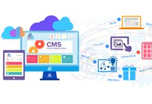 Web Application and CMS development